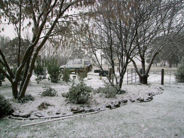 Snow in Ben Lomond, NSW