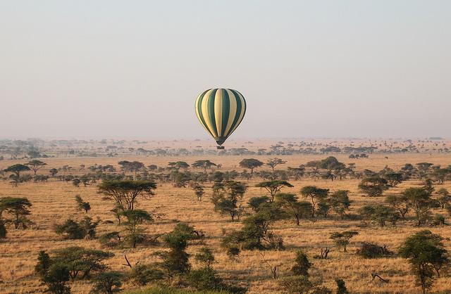 serengeti hot air balloon
